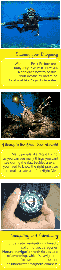 During the Advanced Open Water Dive Course you will join dives like the Deep Dive, the Navigation Dive and optional Dives like the Peak Performance Buoyancy Dive and the Night Dive