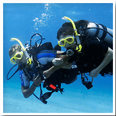 Discover scuba diving and become engaged with the oceans