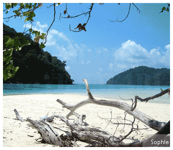 White powdered beach of the Surin National Marine Park in Thailand